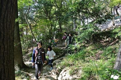 鶴形山の道