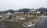 2012-03-10 11.36.18.jpg