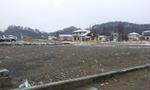 2012-03-10 11.35.38.jpg