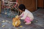 アメリカフウの葉っぱを集める女の子(2007.11.17)